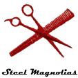 160130 Appomattox Courthouse Theatre: STEEL MAGNOLIAS