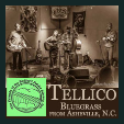 170407 Friends of the Bedford Public Library: TELLICO
